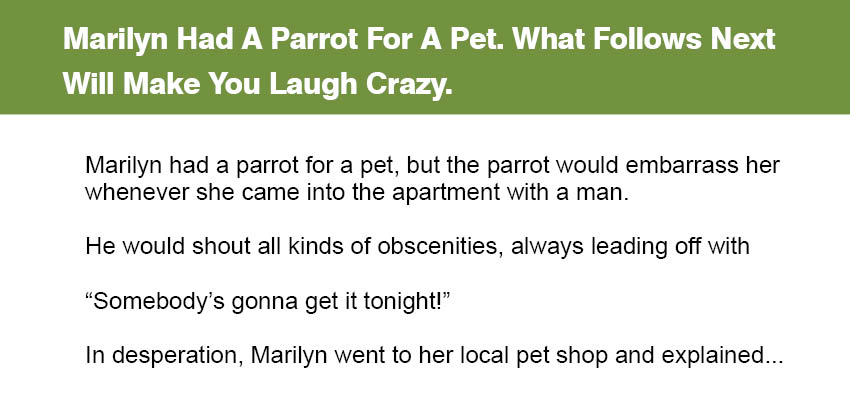 Marilyn Had A Parrot For A Pet.